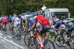 Pelotonen - Tour de France 2014 Fotografering för Bildbyråer