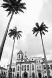 Pelourinho Salvador Bahia Brazil Colonial Architecture Palm Trees. Colonial church architecture of Anchieta Plaza with tall royal palms in Pelourinho Salvador Stock Images