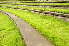 Pelouse d'herbe avec des opérations photos libres de droits