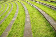 Pelouse d'herbe avec des opérations photo libre de droits