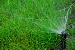 pelouse d'irrigation Photographie stock