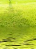 Pelouse et étang Photographie stock
