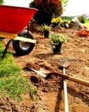 Pelouse et jardin Image libre de droits