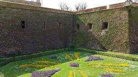 Pelouse et mur de château Image stock