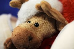 Peluche. Deer - christmas toy weared christmas cap and scarf Royalty Free Stock Image