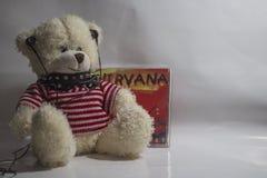 Peluche dell'orso Fotografia Stock Libera da Diritti