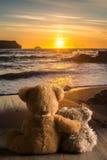 Peluches que miran la puesta del sol Foto de archivo