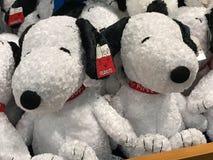 Peluches Snoopy en la tienda del campo en Carowinds en Charlotte, NC Foto de archivo libre de regalías