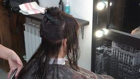 Peluquero-estilista que hace a la muchacha del corte del pelo que se sienta delante de un espejo en la salón-belleza Cierre para  metrajes