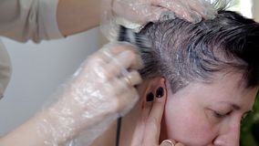 Peluquero profesional, cliente femenino de la coloraci?n del cabello del estilista El concepto de belleza y de moda almacen de metraje de vídeo