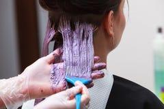 Peluquero que aplica al cliente femenino del color en el salón, haciendo el tinte de pelo Foto de archivo libre de regalías