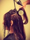 Peluquero que diseña el pelo largo oscuro de la mujer Imagen de archivo