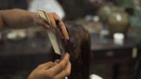 Peluquero que peina el pelo mojado mientras que corte de pelo con las tijeras del peluquero en estudio de la belleza Peluquero us metrajes