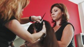 Peluqueros que colorean el pelo en estudio Proceso del colorante almacen de video