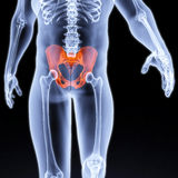 Pelvis. Male pelvis under the X-rays. pelvis is highlighted in red Stock Photography