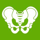 Pelvis icon green. Pelvis icon white isolated on green background. Vector illustration Stock Photography