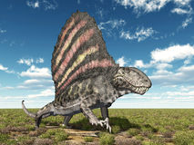 Pelycosaur Dimetrodon Stock Photo