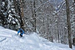 Pelz-Bäume unter einem Schnee lizenzfreies stockfoto