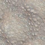 2017-02-02 - Pelz 005 der Reihen-15 - nahtloses Muster Px 2000 - Lizenzfreie Stockfotos