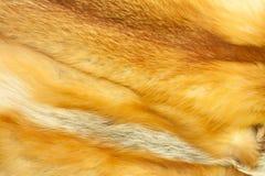 Pelz des roten Fuchses Stockbild