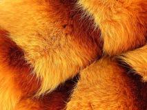 Pelz eines Fuchses Lizenzfreies Stockfoto