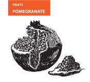 Pemagranate Arkivfoto
