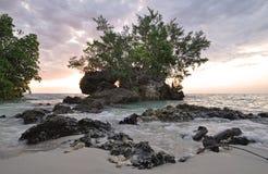Pemba Insel, Tanzania Stockbilder