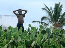 PEMBA, MOZAMBIQUE - 5 DESEMBER 2008: Soportes africanos desconocidos del muchacho imagen de archivo libre de regalías