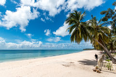 Pemba paradise beach, north Mozambique Royalty Free Stock Images