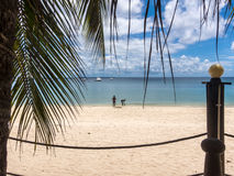 Pemba paradise beach, north Mozambique Stock Photography