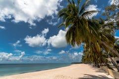 Pemba paradisstrand, norr Mocambique Arkivfoton