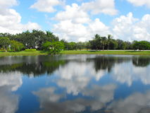 Pembroke Pines lake. Cloudy, sunny day lake and palm trees in pembroke pines ,USA in summer Royalty Free Stock Photography