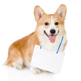 Pembroke Welsh Corgi dog with a blank banner Royalty Free Stock Images