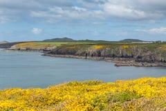 Pembrokeshire海岸St新娘海湾威尔士 免版税库存图片