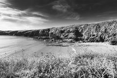 Ακτή Pembrokeshire στη φωτεινή θερινή ημέρα στοκ εικόνα