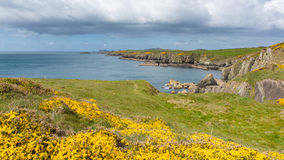 Pembrokeshire Coast St Brides bay Wales Royalty Free Stock Photos