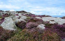 Pembrokeshire Coastal Path - Wales, United Kingdom Stock Image