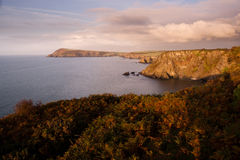 Pembrokeshire coastline at sunset. Pembrokeshire cliffs and sea in evening sunlight, taken north of Fishguard Stock Photography