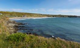 Pembrokeshire Whitesands zatoka Zachodni Walia UK Zdjęcie Royalty Free