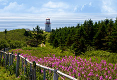 Península de Gaspe, Quebeque, Canadá Fotos de Stock Royalty Free