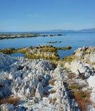 A península de Kaikoura aumentou 1 25 medidores pelo terremoto gigantesco Imagem de Stock Royalty Free