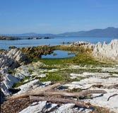 A península de Kaikoura aumentou 1 25 medidores pelo terremoto gigantesco Imagem de Stock