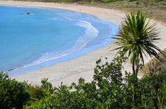 Península de Karikari da baía de Matai - Nova Zelândia Foto de Stock Royalty Free