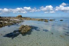 Península de Karikari - Nova Zelândia Fotografia de Stock