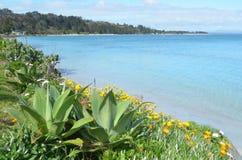 Península de Karikari - paisagem Nova Zelândia Fotos de Stock