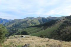 Península de los bancos fuera de Christchurch, Nueva Zelanda imagen de archivo libre de regalías