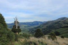 Península de los bancos fuera de Christchurch, Nueva Zelanda fotos de archivo libres de regalías