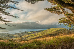 Península de Otago, ilha sul, Nova Zelândia fotografia de stock
