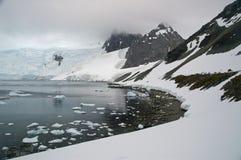 Península do Antarctic do porto do paraíso Foto de Stock