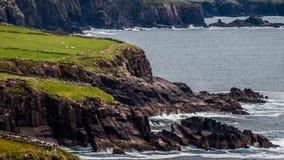 Península do Dingle Foto de Stock